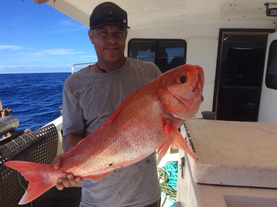 Mark_with_big_red