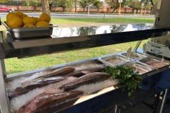 WA_Market_Fresh_Fish_inside__van