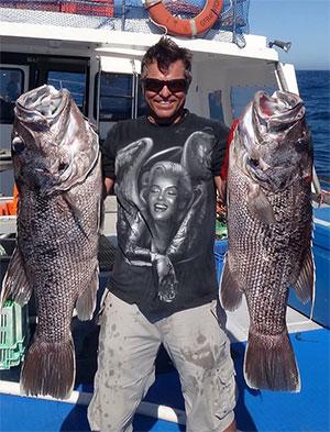 WA Market Fresh Fish